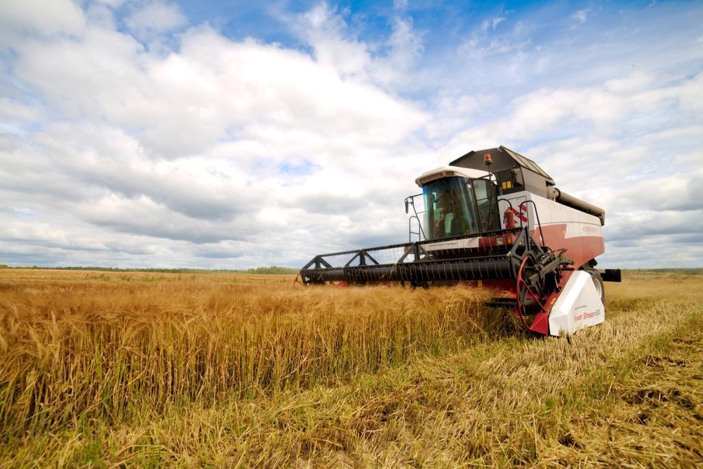 Urea fertilizer for export